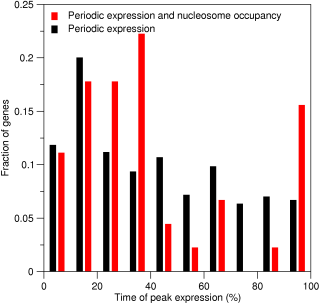 Peak-time distribution of of periodically expressed genes with and without periodic nucleosome occupancy